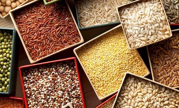 Legumes_Grains_INSET-W